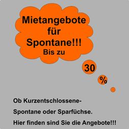 neu-Mietangebote400